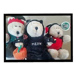 NWT Starbucks Bears